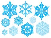 Set of 10 snowflakes. Natural and fantasy. Easy to change color poster