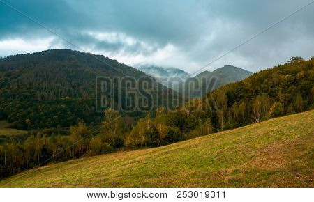 Forest On The Grassy Hillside. Moody Autumn Landscape In Mountain. Cloudy And Foggy Morning. Trendy
