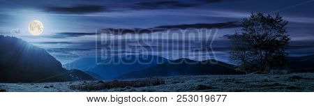 Panorama Of A Mountainous Landscape. Trees On The Grassy Meadow. Power Line Tower In The Distance. B