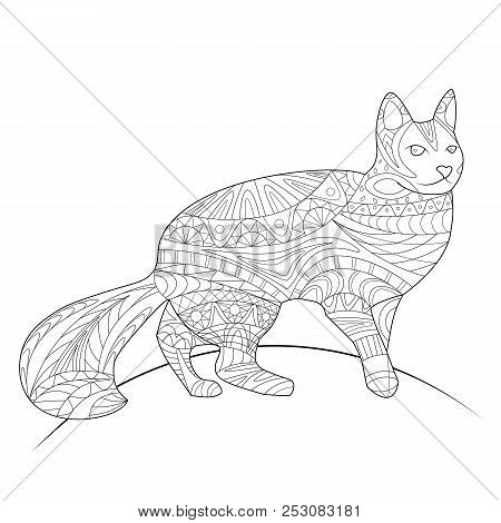 Coloring Book, Coloring Page, Animal, Cat, Pattern, Vector