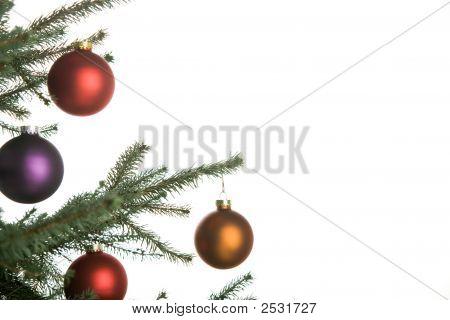 Christmas Pine-Tree