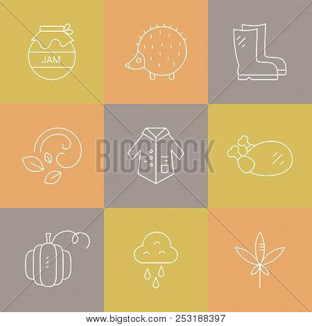 Collection Of Vector Autumn Icons. Vector Pictogramm Set. Unique And Modern Set Of Linear Icons Isol