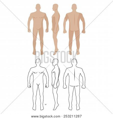 Fashion Man Body Full Length Bald Template Figure Silhouette (front, Back And Side Views), Vector Il