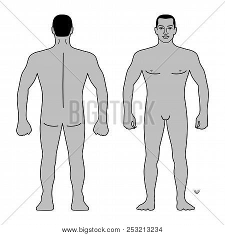 Fashion Man Body Full Length Template Figure Silhouette (front, Back Views), Vector Illustration Iso