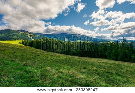 Lovely Autumn Landscape. Spruce Forest On The Grassy Meadow. Beautiful Mountain Ridge In The Distanc
