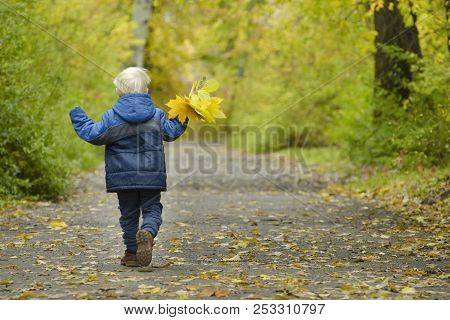 Blond Boy Running Through The Autumn Park. Back View