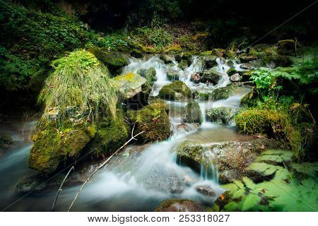 Nature Rainforest River Cascade. Stream In Forest Nature. Green Forest Stream. Nature. Stream. Natur