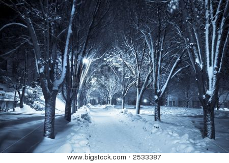 Silent Walkway Under Snow