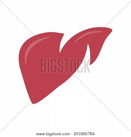 Abstract Liver Vector Shape Design Illustration. Healthy Liver Vector