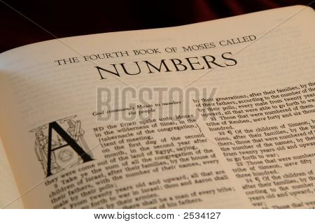 Books Of The Bible  Numbers