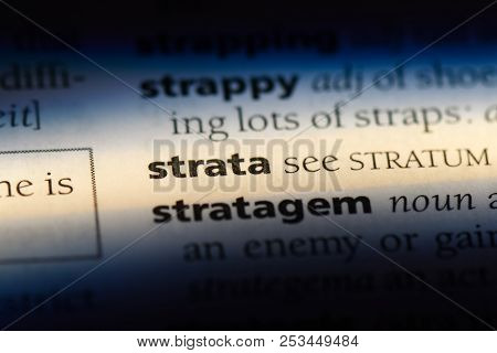 Strata Word In A Dictionary. Strata Concept.
