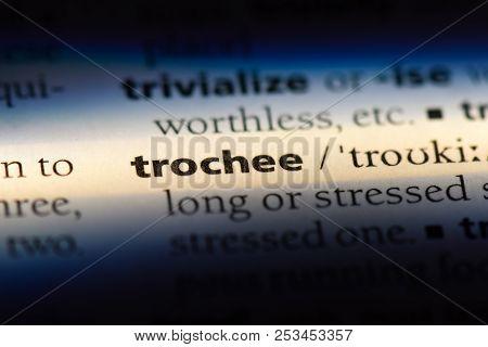 Trochee Word In A Dictionary. Trochee Concept.