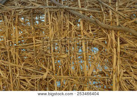 Bamboo Beach Gazebo