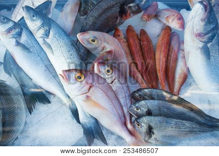 Fresh Fish In Seafood Storefront. Many Kinds Of Raw Fish.