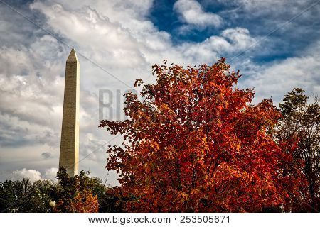 Autum In Dc 2