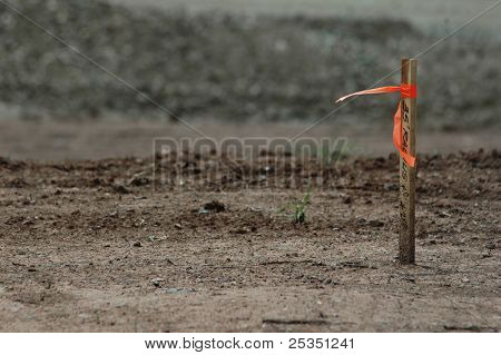 Stake with ribbon at construction site.