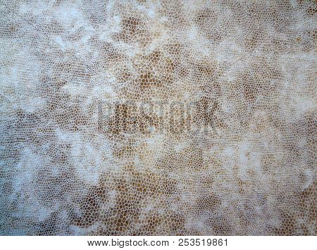 Natural Textured Background, Fabric Velvet Skin Close- Up