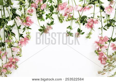 Wild Flowers Summer Beauty Background With A Space For A Text, Flat Lay Composition