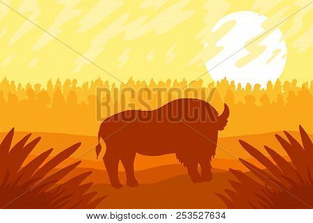 Landscape With Wild Strong Bizon On Field. Sunrise Panorama. Natural Prairies With Grass. Vector