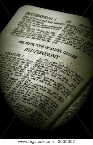 Bible Series Deuteronomy Sepia