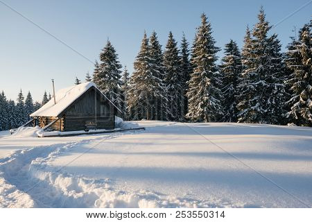 Winter Landscape Of A Mountain Forest With A Cabin. Trail Stamped In The Snow Towards The Cabin. Fir