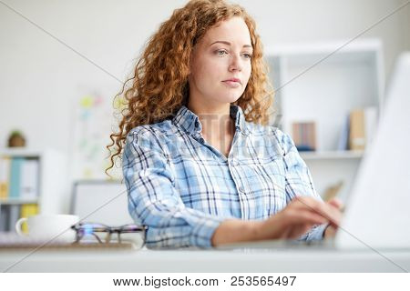 Young female manager with curly hair typing and browsing in the net during working day in office