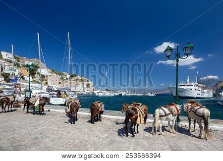 Hydra/greece - 04 June 2018: Donkeys And Horses The Only Means Of Transport At Hydra Island, Saronic