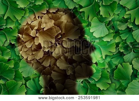 Concept Of Alzheimer Disease With A Ginkgo Biloba Leaf Background And A Human Head Representing The