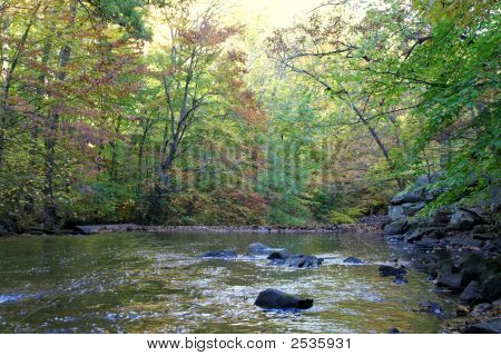 Stream With Fall Colors