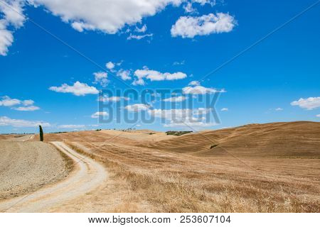 Tuscany holidays. Italy holidays tuscany. Summer landscape in Tuscany with fields, blue sky, cypress and road, Italy, Europe. Vacation in beautiful Italy.
