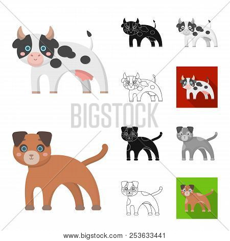 Toy Animals Cartoon, Black, Flat, Monochrome, Outline Icons In Set Collection For Design. Bird, Pred
