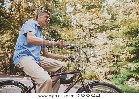 Old Man Sitting On Bicycle In Park In Summer. Healthcare Concept. Relaxing In Park. Active Rest Conc