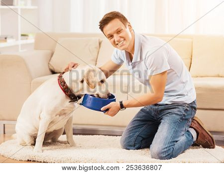 Young Man Feeding Dog Sitting On Floor In Room. Est At Home. Relaxation Concepts. People And Pets. R
