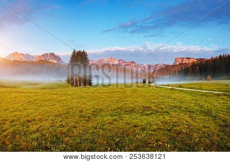 Awesome summer day in the Durmitor National park. Location place village Zabljak, Montenegro, Balkans, Europe. Scenic image of tranquil alpine valley. Travel destination. Discover the beauty of earth.