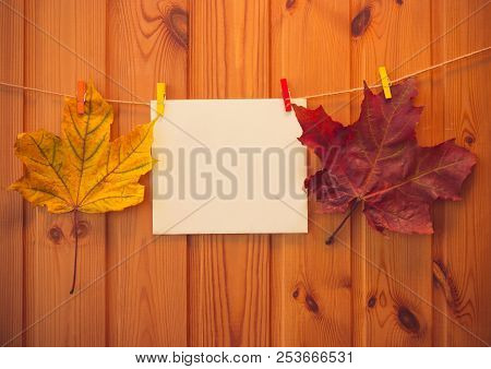 Autumn Maple Leaves And Empty Card Hang On Rope On Wooden Background