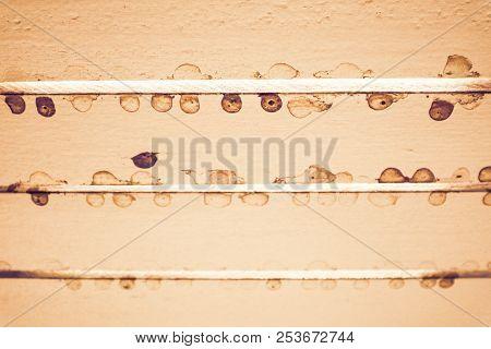 Ceiling Wood Brown Ditry Rust Spot Was Born Rain Drop
