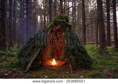 Primitive Bushcraft Wikiup / Teepee Survival Shelter With Campfire In The Forest Wilderness Of Upsta