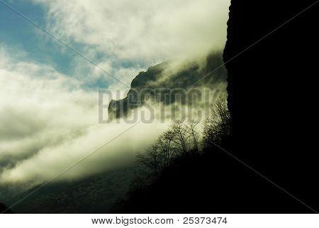fog victory