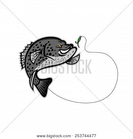 Mascot illustration of a black crappie, strawberry bass, speckled bass, specks, speckled perch, crappie bass or calico bass jumping for a single hook bait or lure isolated background in retro style. poster