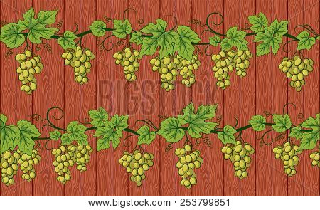 Seamless Background, Green Grape Vines With Berries And Leaves On Wooden Fence Wall. Vector