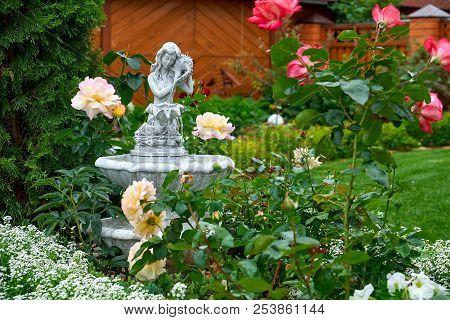 Fountain In The Garden. Landscape Design. Flowers Garden. Flowers In The Garden After Rain. Flowers