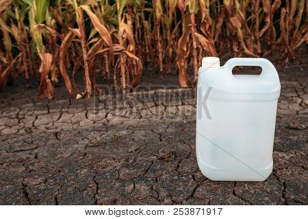 White Plastic Pesticide Chemical Jug In Cornfield As Mock Up Copy Space For Herbicide, Fungicide Or