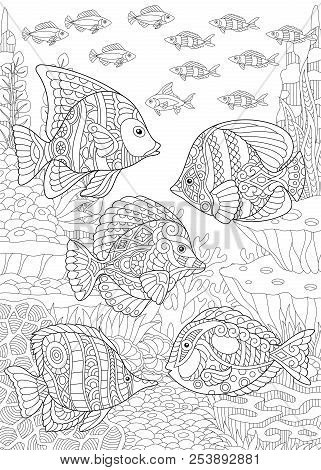 Coloring Page. Coloring Book. Colouring Picture With Tropical Fishes. Antistress Freehand Sketch Dra