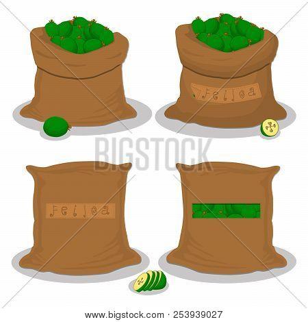 Vector Icon Illustration Logo For Bags Filled With Fruit Green Feijoa, Storage In Sacks. Feijoa Patt