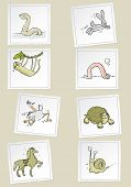 fast and slow funny animals vector cartoon set poster