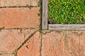 The Composition of grass wood and floor tiles poster