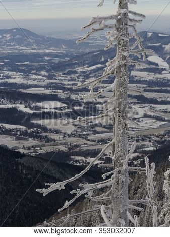 View of the snowy valley from Lysa Hora in the Czech Republic. In the foreground a tree trunk covered with snow. Picture taken in the winter on a cloudy day.