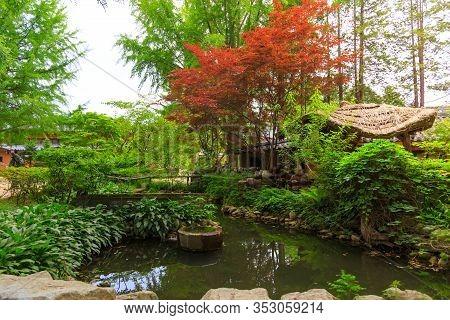 Beautiful Nature Landscape Scene At Nami Island (namiseom), Where The Popular Korean Drama Winter So