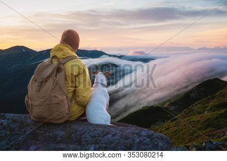 Alone tourist sitting on the edge of the cliff with white dog against the backdrop of an incredible sunrise mountains with flowing fog. Landscape photography