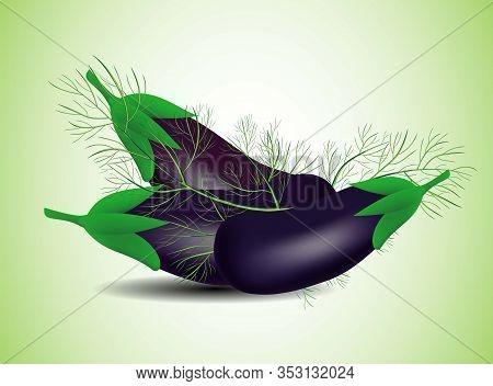 Rustic Illustration. Vegan Dinner. Green Farm. Purple Eggplant. Gourmet Food.